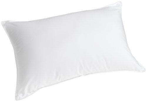 Slumberfresh Polyester Bed Pillow King Prahoq